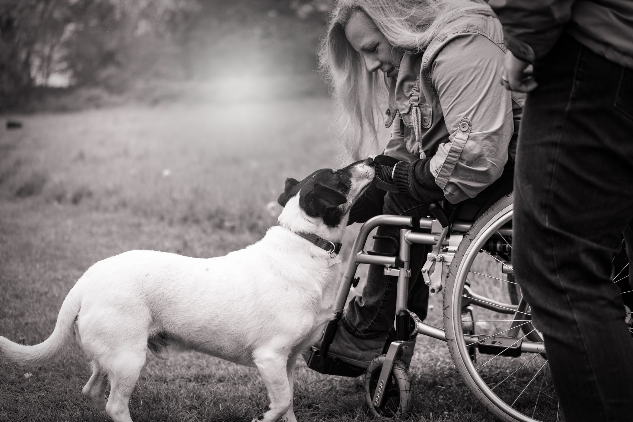 Black and white image of a woman in a wheelchair with a dog