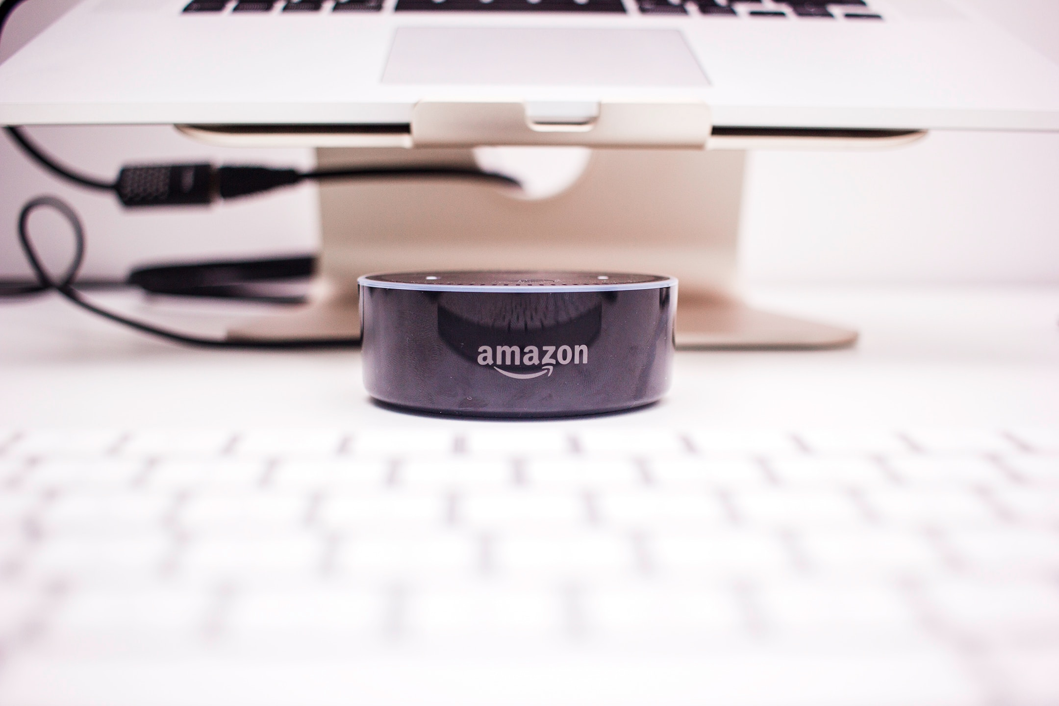A picture of Amazon Echo voice speaker