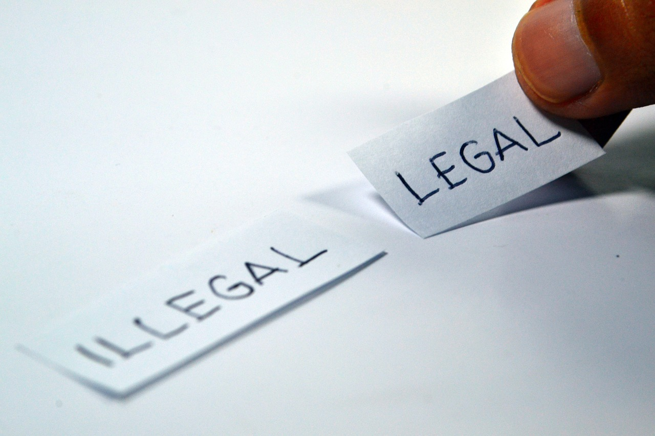 A person with two pieces of paper, one saying 'illegal' the other saying 'legal'