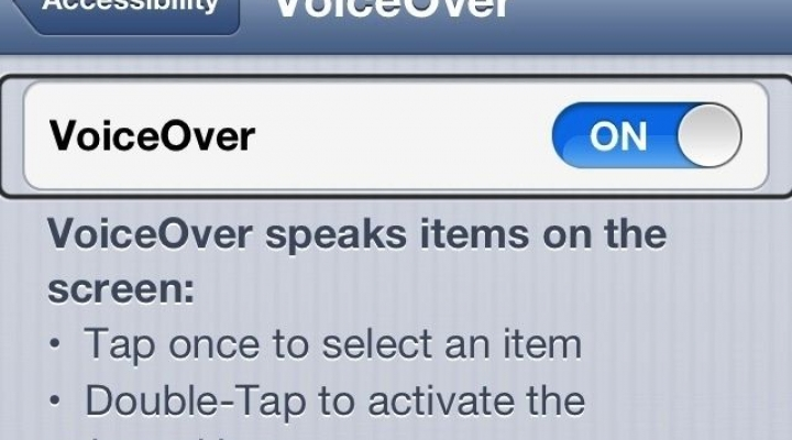 Iphone VoiceOver menu switch